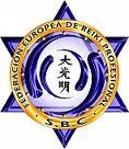 Logo Federación Europea de Reiki